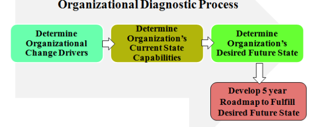 Process for Organizational Diagnostic & New Strategic Plan Development