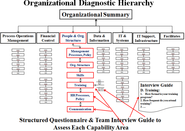 Organizational Capability Diagnostic Structure