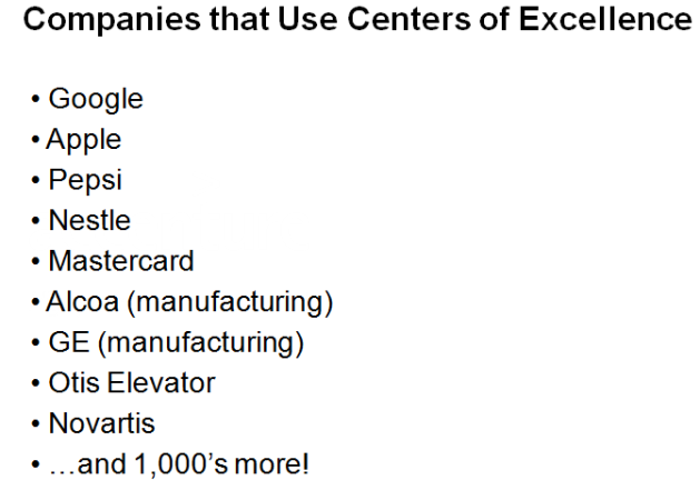 Companies That Have Utilized a Center of Excellence