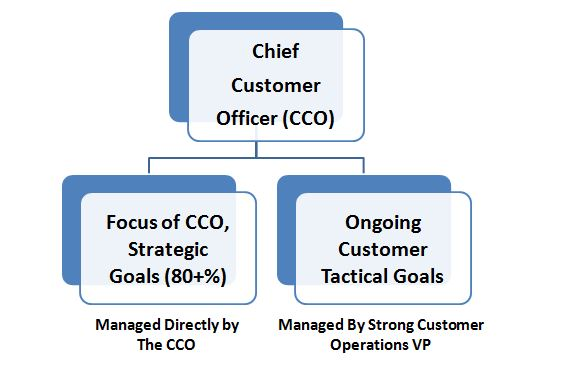 Optimal Chief Customer Officer Goals & Organizational Structure